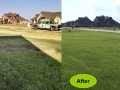 LawnCare04